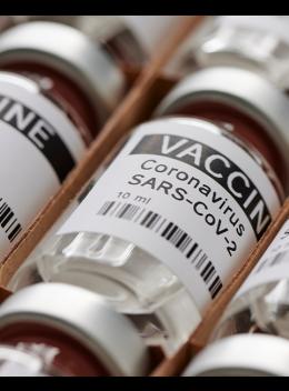 The Covid-19 Vaccine: Some Info